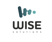 Wise Solutions – разработка и внедрение комплекса услуг для эффективно